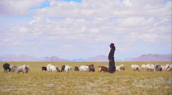 《你好,西藏!》第三集:生態牧歌