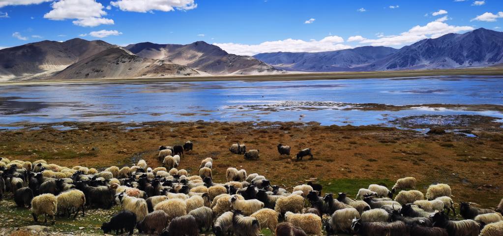 西藏定結濕地:靜水如鏡(圖)