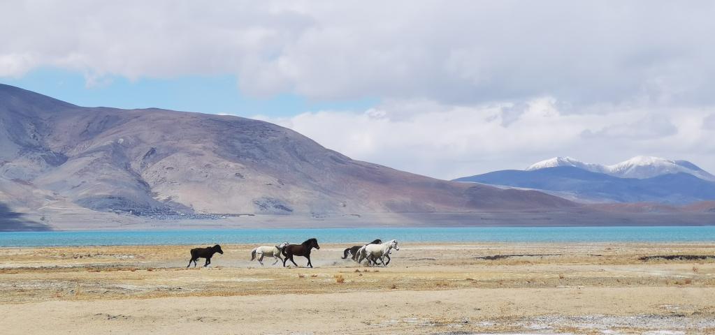 佩枯錯:珠峰保護區內最大內陸湖泊(圖)